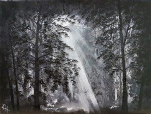 Fotonit metsässä